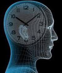 با ساعت بیولوژیکی بدن کوک باش
