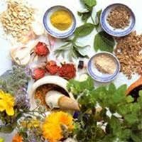 آرامبخشهای گیاهی برای رفع میگرن