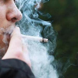 سیگار سالانه جان 6 میلیون نفر را می گیرد