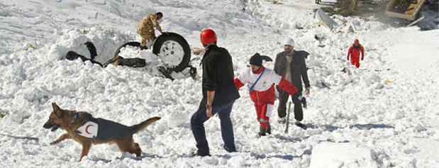 چه برف و بوران، چه حادثهای مثل پلاسکو اتفاق بیفتد، مدیریت بحران نداریم/نبود امکانات لازم برای مواجهه با کولاک و برف