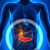 بیماری التهاب کیسه صفرا در کمین فستفود خورها