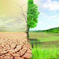 تاثیر تغییرات اقلیمی بر کاهش تولید محصولات کشاورزی