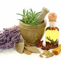 داروی گیاهی، درمان قطعی دیابت نیست