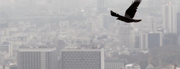 آلودگی بیسابقه در ١٠ سال اخیر، عید تهران را آلوده کرد