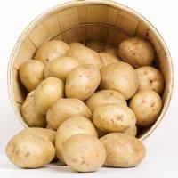 غذاهایی که به صورت طبیعی خالی از گلوتن هستند را بشناسید