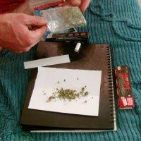 گل، دومین مخدر مصرفی کشور