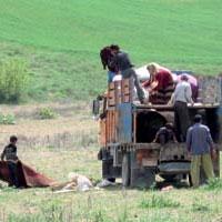 رشد مهاجرت از روستاها به شهرها متوقف شد/شناسایی 3 هزار روستای در معرض تخریب