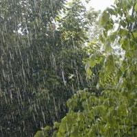 امروز و فردا باران تابستانی چند استان را در بر میگیرد؟