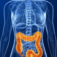 8 گام برای داشتن روده سالم