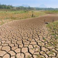تغییر اقلیم، شمال را خشک میکند