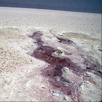 خطر احیا نشدن دریاچه ارومیه یکسوم کشور را تهدید می کند