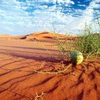 خاک بحرانیتر از آب