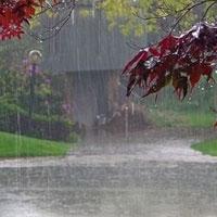 کدام استان ها بیشترین بارش بهاری را داشتند؟