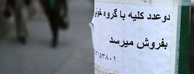 خرید و فروش کلیه و کبد علنی شد!