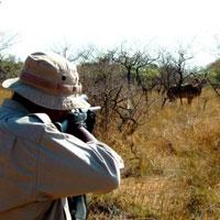فهرست قرمز برای گونههای در معرض خطر انقراض ایران