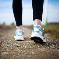 پیادهروی، كلید رفع دردهای مفصلی