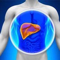 کبد چرب در افراد چاق شایع تر است/دو شرط کنترل چاقی