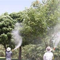 اعلام میزان آلایندهها و سموم در محصولات کشاورزی + جزییات