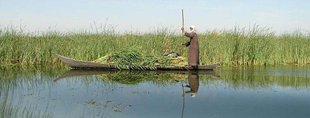 واگذاری تالابها به وزارت نیرو منتفی است/افغانستان، هیرمند را منحرف میکند