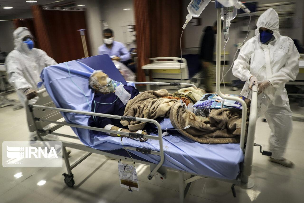 عکس| جهادگران عرصه سلامت