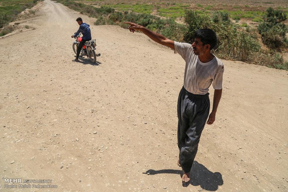 up 7dea9421ccf6e693ecc0077809902a2e تصاویر | روزگار غمانگیز تالابهای خوزستان   دریاچه ها و تالاب ها   محیط زیست سلامت