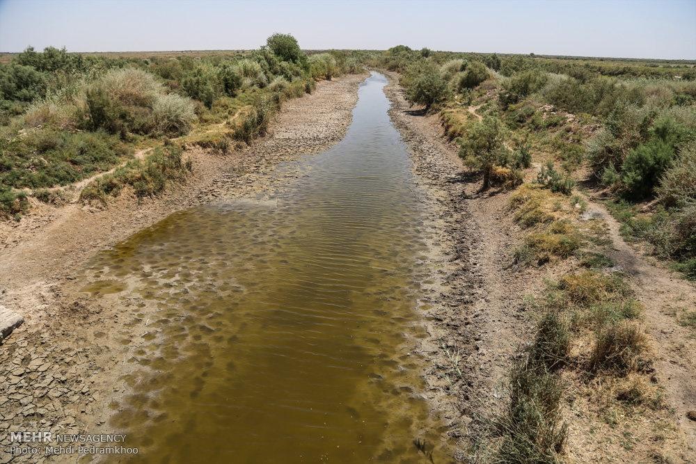 up a354b17cd6eab770cb98aaf1e104b127 تصاویر | روزگار غمانگیز تالابهای خوزستان   دریاچه ها و تالاب ها   محیط زیست سلامت